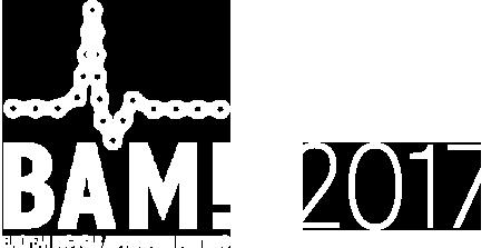 bam-elemento-2017-w-450x223